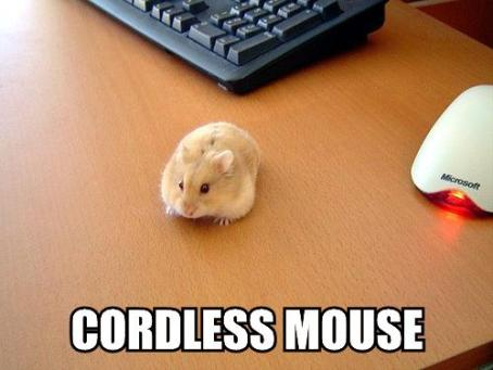 cordless-mouse.jpg
